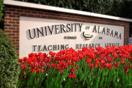 UA Picture